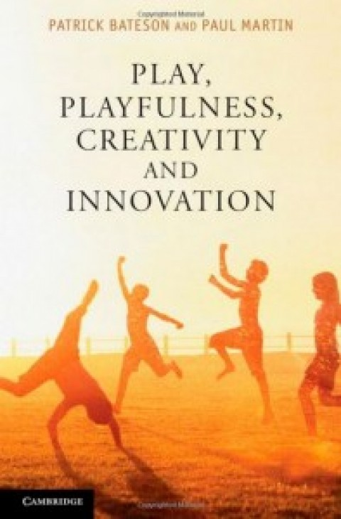 Play, Playfulness, Creativity and Innovation by Patrick Bateson and Paul Martin