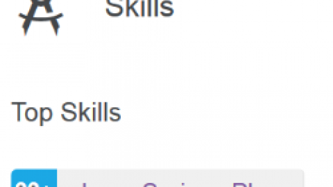 "LinkedIn Skills Endorsements for ""Lego Serious Play"""