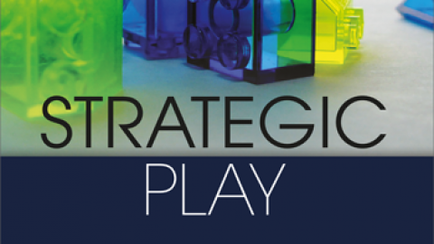Kindle Version of Strategic Play Book Now Available