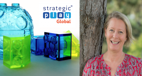 LEGO® SERIOUS PLAY® Methods Facilitator Certification Teams & Groups Whistler BC May 2019
