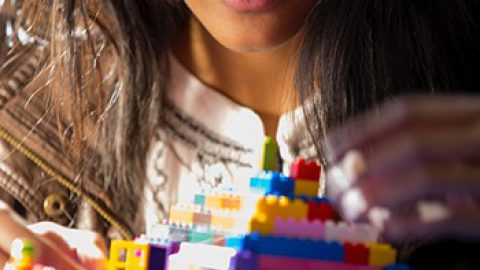 Research project to examine the use of Lego Serious Play in solving challenges in multi-stakeholder groups